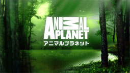 animal planet endpage